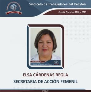 Secretaria de Acción Femenil