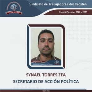 Secretario de Acción Política