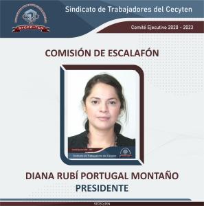 Comisión de Escalafón Presidenta